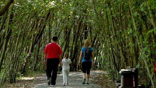Recuperación. Paseo del Parque Ecológico de Plaiaundi. / ARIZMENDI